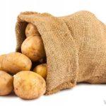 2013 - 9. kohal kartulid