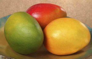 Mango erinevad sordid värvustega:  roheline, kollane ja punaneFoto: mango.org