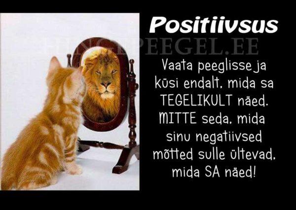 Positiivsus vs negatiivsus