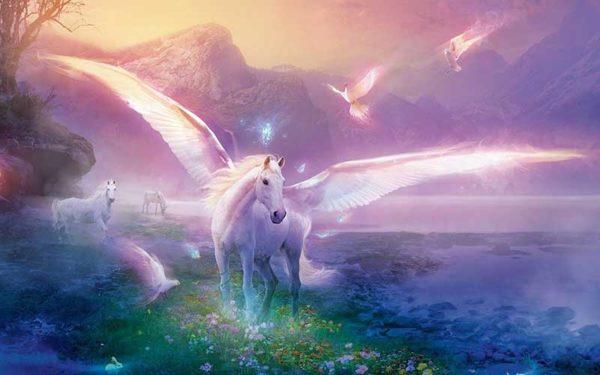 Foto: Ascension Earth