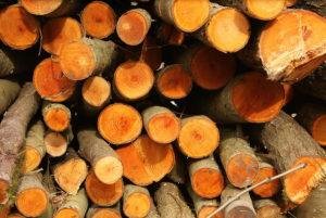 http://www.timberyard.co.uk/